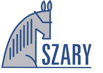 logo_klub_jazdy_szary